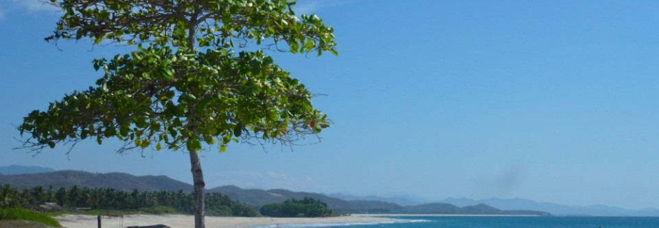 Day trip to untouched Mexico: Roca Blanca beach, Oaxaca